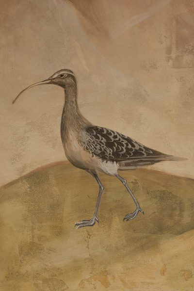 Curlew, detail from Transfiguration fresco